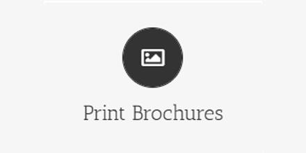 High Quality Print  Brochures